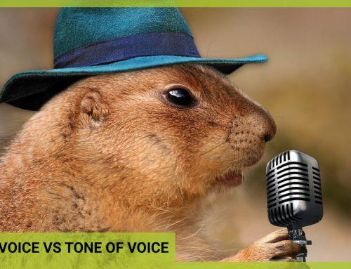 Brand Voice Vs Tone of Voice