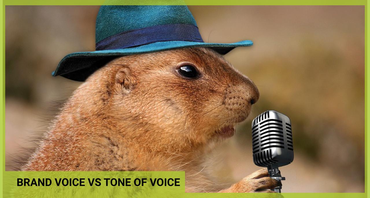 brand-voice-vs-tone-of-voice